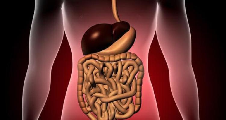 Hipertensión portal dolor de espalda