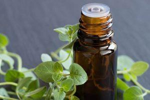 Salud y beneficios medicinales del aceite de orégano y sus efectos secundarios