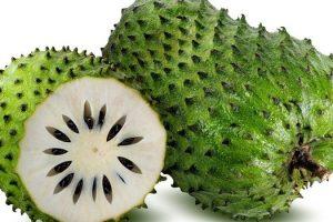 Beneficios para la salud de la fruta de Guanabana o Graviola (guanábana) y sus efectos secundarios, datos nutricionales