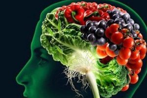 Cuáles son los alimentos que aseguran un cerebro de funcionamiento rápido