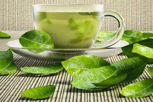Es el té verde bueno para la esclerosis múltiple