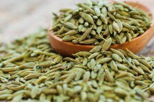 Valor nutricional de las semillas de hinojo o Saunf, sus beneficios para la salud y usos medicinales