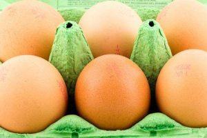 puedes conseguir listeria de huevos