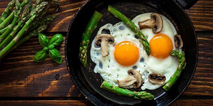 razones por las que los huevos son los alimentos más saludables del planeta